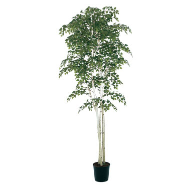 Birch 7' - Artificial Trees - Artificial birch tree rental