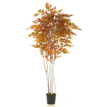 Birch Fall 7' - Artificial Trees - Artificial fall trees for rent