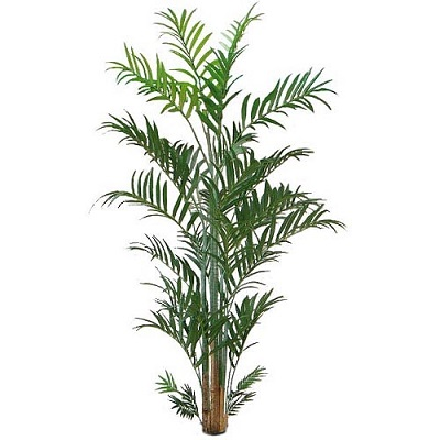 Kentia Palm 12 foot - Artificial Trees & Floor Plants - 12 foot artificial palm tree for rent