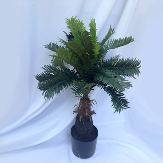 Cycas Palm 3ft - Artificial Trees & Floor Plants - Minature palm trees