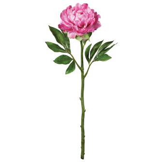 Peony - Beauty - Artificial floral - artificial pink peony for rent
