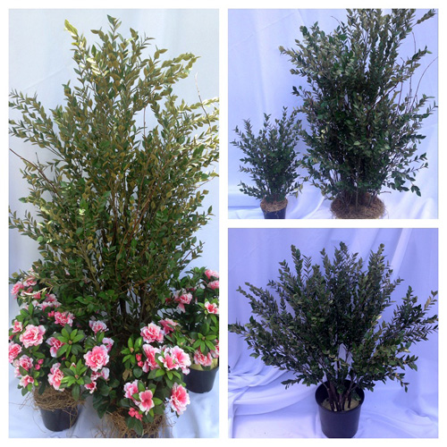 Oregonia Shrub 50 - Artificial Trees & Floor Plants - artificial shrubs for rent