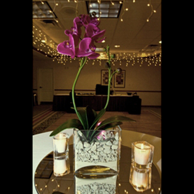 Glass Rectangle Vase - Centerpieces & Columns - Centerpieces for boat weddings