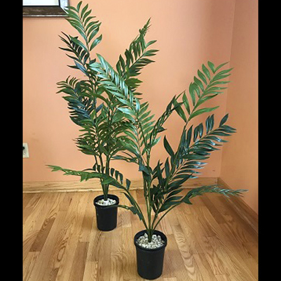 Parlour Palm Pair 3' & 4' - Artificial Trees & Floor Plants - Prom tropical tree rental