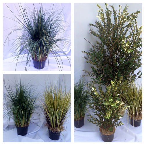 Potted Grass 2' - Artificial Trees & Floor Plants - Artificial potted grass for rent
