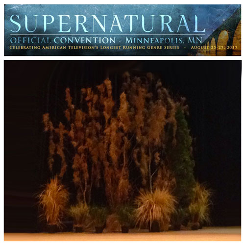 Spooky Woods - Idea Gallery - Supernatural convention stage decor 2017