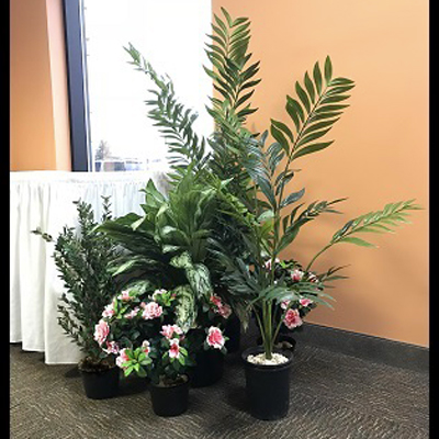 Small Tropical Grouping - Artificial Trees & Floor Plants - artificial tropical plants for rent