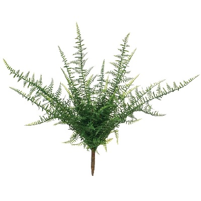 Feather Fern 28