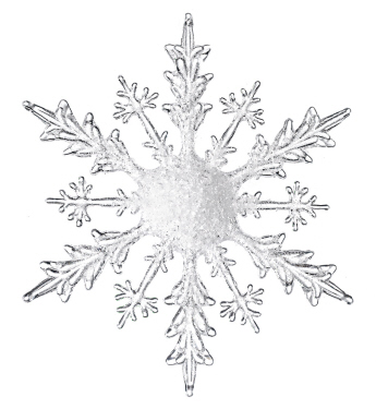 Large Snowflake - Events & Themes - Bulk purchase acrylic snowflakes assorted