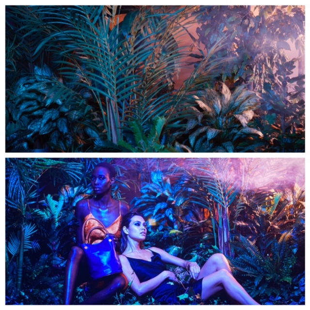 Rent-A-Jungle - Themed Rentals - Photography Tropical Backdrops