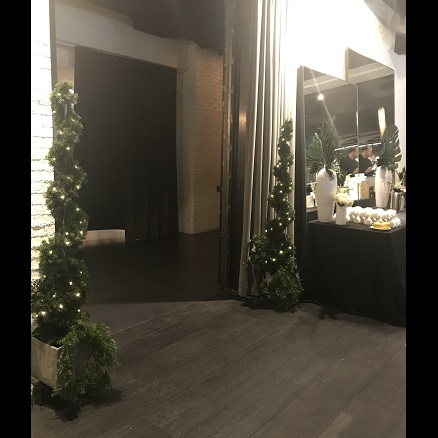 Cedar Spiral Topiary Lit/Potted - Idea Gallery - lighted spiral trees for weddings and business conventions